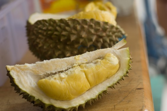 1durian-565x375